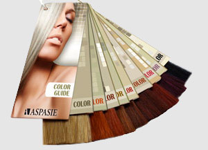 Hair color swatches (Swatch ring) - Aspasie
